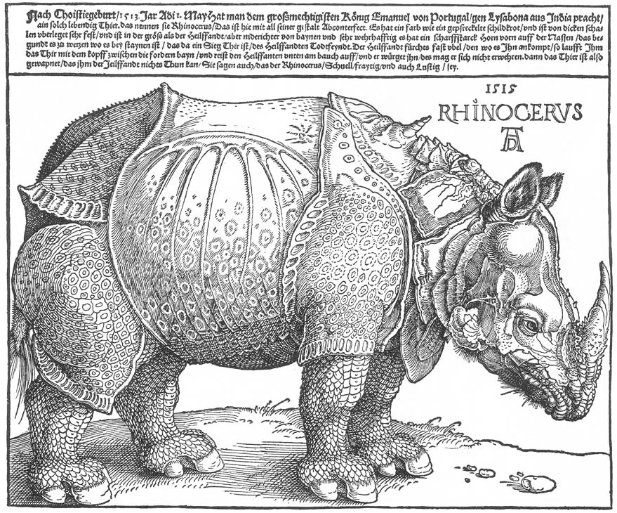 From a sketch that was sent to him, Albrecht Dürer (1471—1528) made this famous woodcut of the rhinoceros (Click to view larger version...)